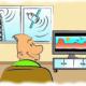 Recevoir la television par satellite dans votre logement AB Habitat mode d emploi 80x80 - AB-Habitat