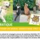 PRATIQUE détenir un animal dom cadrée web 80x80 - AB-Habitat